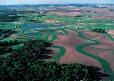 An upstream small dam, terraces, buffer strips, grass plantings and other conservation measures are part of a project designed to improve the quality of water entering Union Grove Lake in Tama County, Iowa.